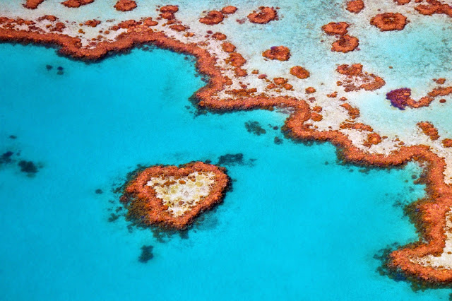 heart reef great barrier reef from above