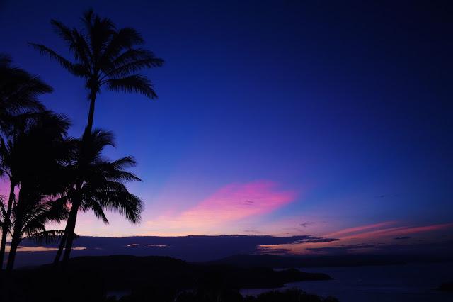 sunset one tree hill hamilton island