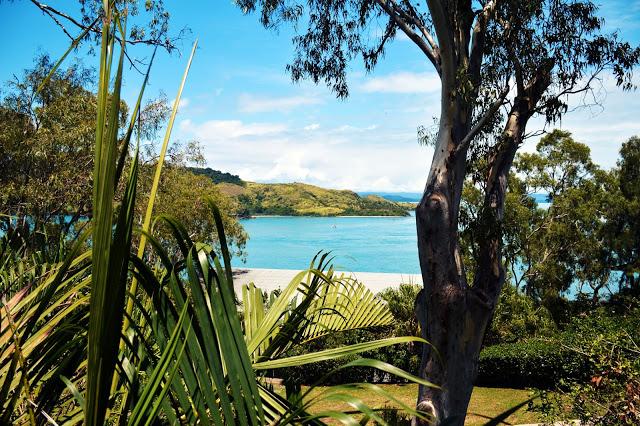 view of hamilton island whitsunday islands