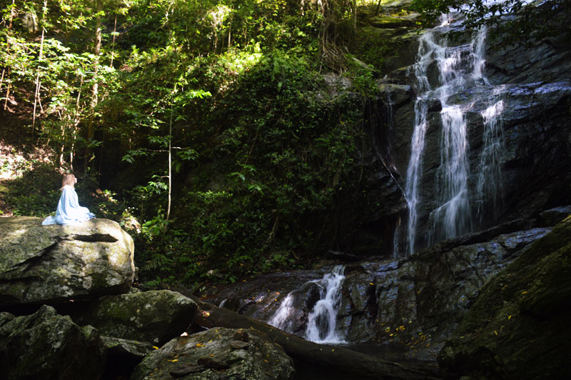 far north queensland cairns secret waterfall
