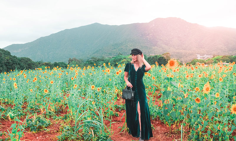 boho velvet outfit with newsboy cap in sunflower field